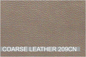 COARSE LEATHER 209CN.jpg