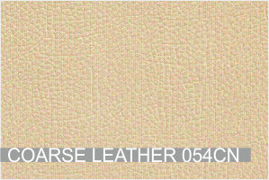 COARSE LEATHER 054CN.jpg